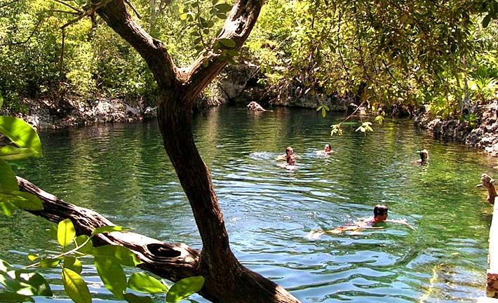 La cueva de los peces en la ci naga de zapata cuba tesoro for Productos para estanques de peces