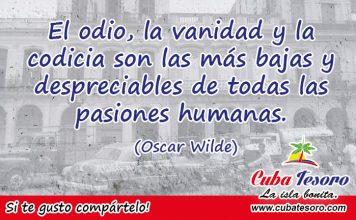 El odio, la vanidad y la codicia son las más bajas y despreciables de todas las pasiones humanas. (Oscar Wilde)