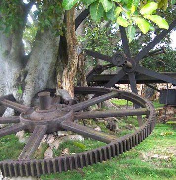El Parque Nacional La Demajagua