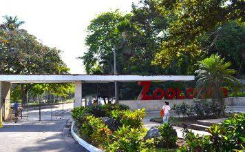 Zoológico de La Habana La Edad de Oro