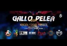 """""""Gallo de pelea"""" fue compuesta para el aniversario 55 de la Unión de Jóvenes Comunistas por Israel Rojas y Gabriel Reyes (Casabe). Sobre el por qué de este"""