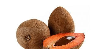 Mamey colorado - Frutas tropicales presentes en Cuba