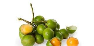 Mamoncillo - Frutas tropicales presentes en Cuba
