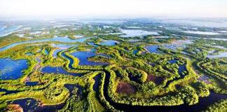 La Reserva de la Biosfera Ciénaga de Zapata